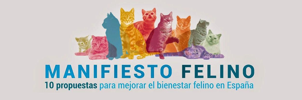 Imagen cabecera Manifiesto Felino